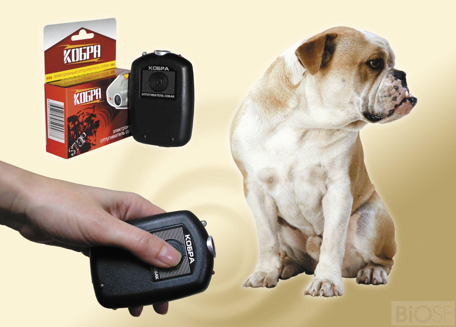 Отпугиватель собак на телефон скачать отпугиватель грызунов цунами 2 отзывы